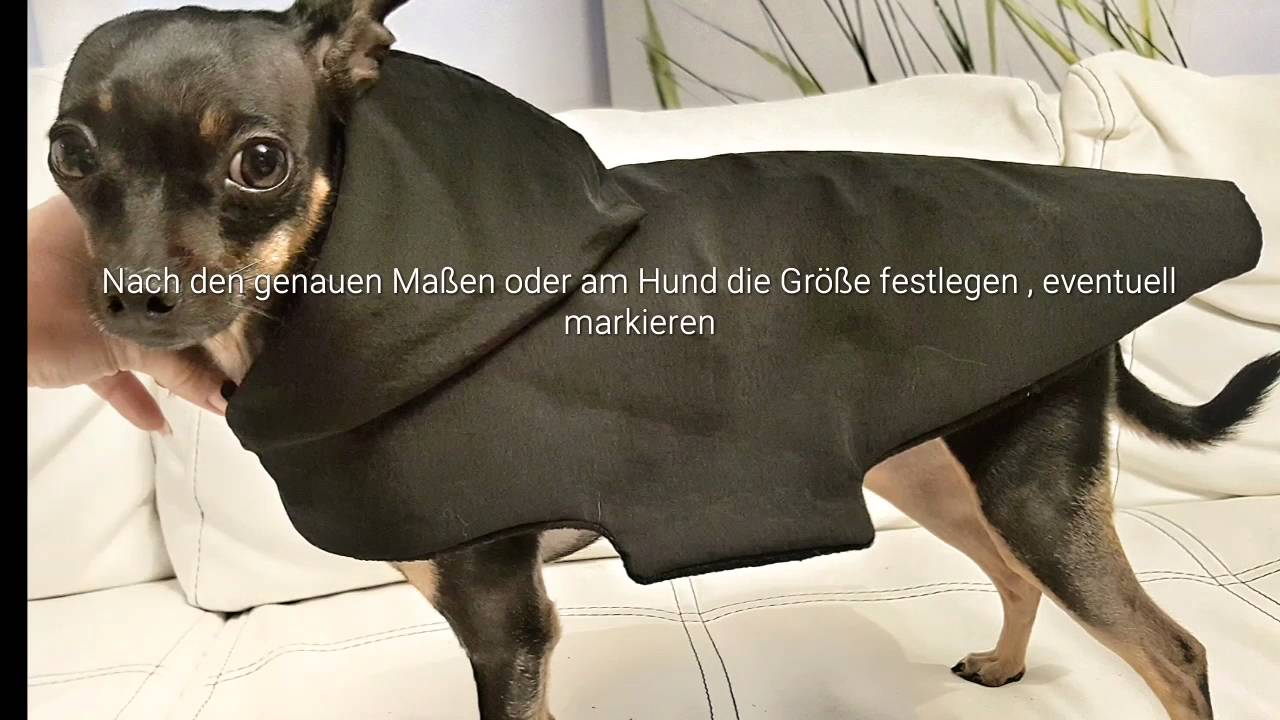 Hundemantel Dogcoat Tutorial selbernähen - YouTube