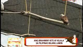 A look at Manila Ocean Park