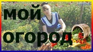 Мой огород 07.07.2016 Выращивание картофеля капусты кабачков лука свеклы моркови урожай посадка