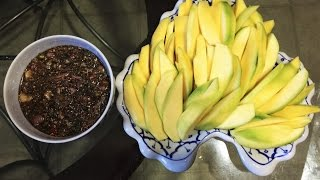 How to make Dipping sauce for sour mango (LAO FOOD) Home Made By Kaysone