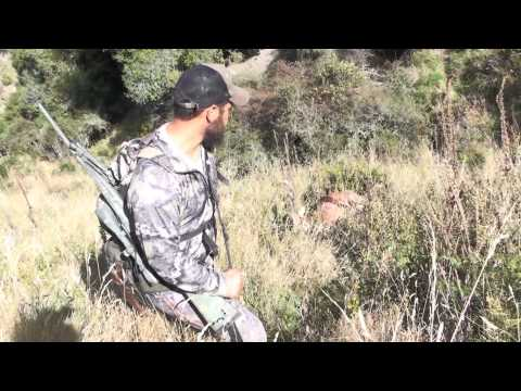 Final Hunting NewZealand Aotearoa part 3/3 Rifle