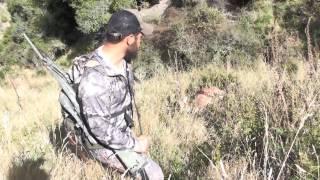 Final Hunting NewZealand Aotearoa part 3/3 Rifle
