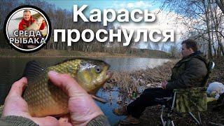 Ловля КАРАСЯ весной Рыбалка на поплавок и донки с берега открытие сезона 2021