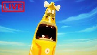 LIVE LARVA  GIANT LARVA  BEST OF LARVA  Cartoon Movie  Cartoons For Children  LARVA Official
