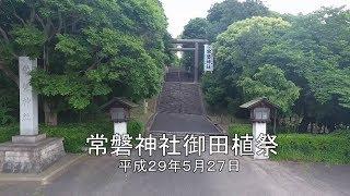 常磐神社御田植祭(平成29年5月27日)