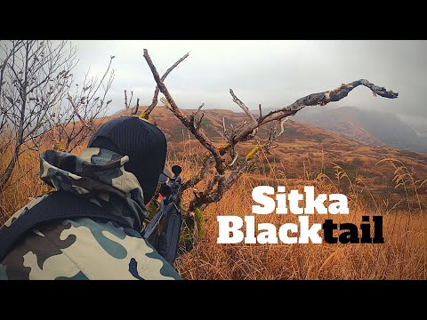 DEER HUNTING: Sitka Blacktail During Maximum Rut