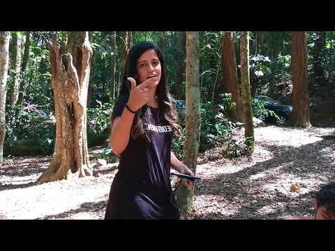 Felipe Lemos-Handpen Music 23/09/2017 Lançamento do CD É LEVE na Floresta da Tijuca