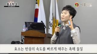 [시흥아카데미 자치보감] 효소학교 - 효소와 효…