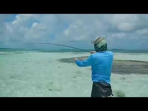 Fly Fishing Bonefish & Fj Flies