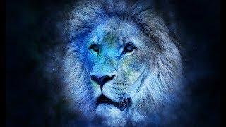 Лев во сне К чему снится лев?