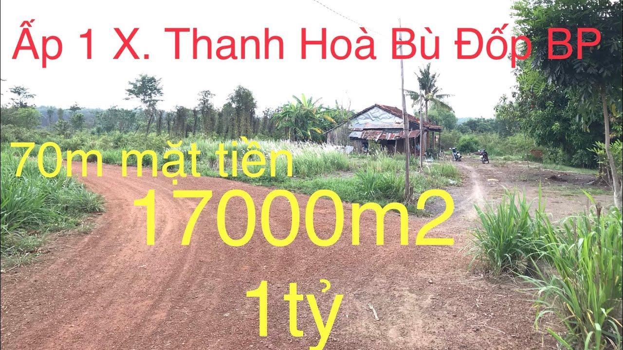 ( NHÀ ĐẤT BÌNH PHƯỚC ) 17000m2 giá 1tỷ. Ấp 1 xã Thanh Hoà Bù Đốp Bình Phước. LH 0888 804070
