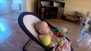 Guilty Dog Brings Toys To Crying Baby: Making Off Guilty Dog Apologize