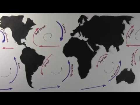 Surface Ocean Currents and Gyres