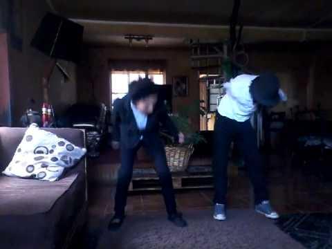 Penguin shake baile