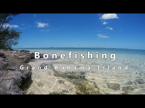 Fly Fishing For Bonefish On Grand Bahama With H20 Bonefishing Bahamas