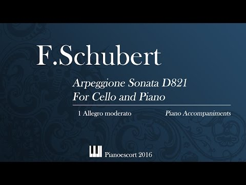 F.Schubert - Arpeggione Sonata D821- Allegro moderato - Cello and Piano - Piano accompaniment