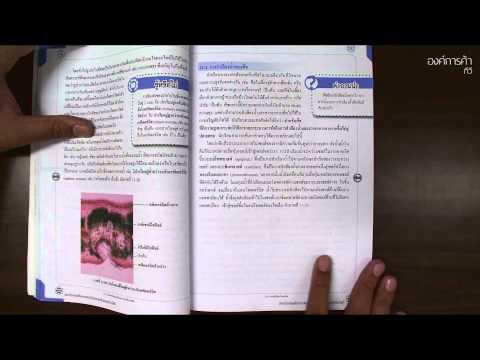 บทที่ 1 ชีววิทยาเล่ม 3 เพิ่มเติม ม4-6