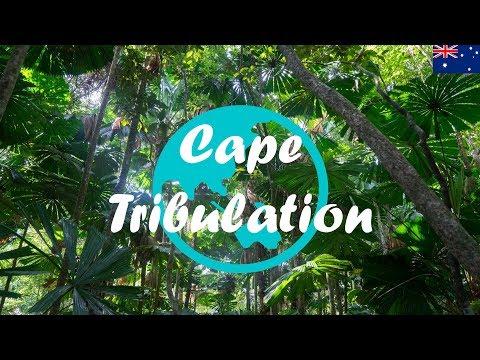 Weltreise Vlog #23: Daintree Nationalpark - Der älteste Urwald der Welt