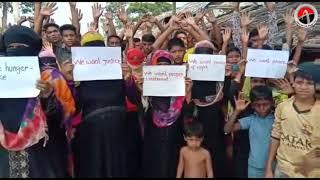 "Registered Rohingya in Bangladesh ,Hungry Strike Demand ""Refugee Status of Registration"