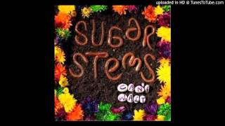 the sugar stems - [09] love you to pieces