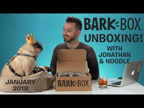 Unboxing the Knights of the Hound Table BarkBox with Jonathan & Noodle! | January 2018