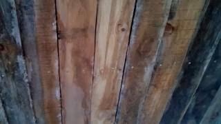 Дом из опилкобетона   анализ ошибок подшивка потолка, шурупы 25 04 2016(Разбор ошибок при подшивке потолка с учётом того, что дом стоял без крыши всю зиму. В конце концов проблему..., 2016-06-05T01:24:01.000Z)