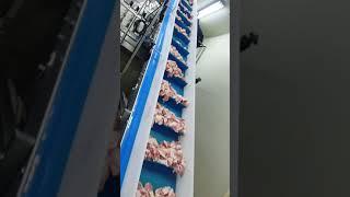 로타리자동진공포장기010-3605-2363 기계문의