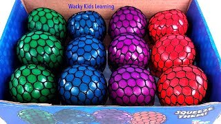 Squishy Mesh Balls Learn Colors Educational Video for Kids