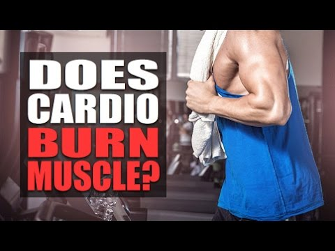 """""""Does Cardio Burn Muscle And Kill Gains?"""""""