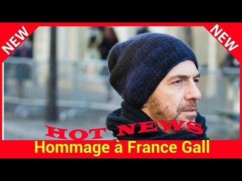 Hommage à France Gall : Calogero au milieu des fans venus se recueillir au funérarium