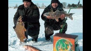 Зимняя рыбалка видео бесплатно Смотри видео о зимней рыбалке 2015 Рыбалка зимой 2015.