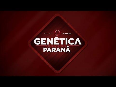 Lote 09 (Iscolada FIV do Paranã - PAR A451)