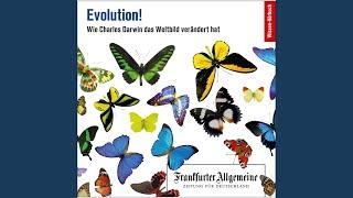 Kapitel 8 - Evolution!