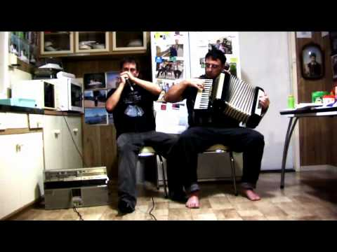 Sweet  and   Mouth Organ and Piano Accordion Duet