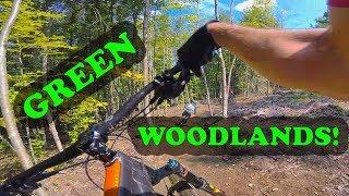 Mountain Biking Green Woodlands | Dorchester, NH