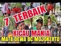 Terbaik Kicau Mania Mojokerto  Mp3 - Mp4 Download