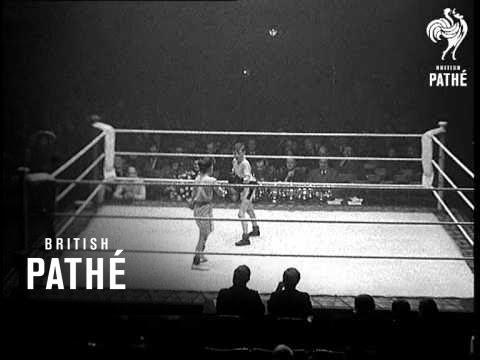 Download Midget Boxers (1935)
