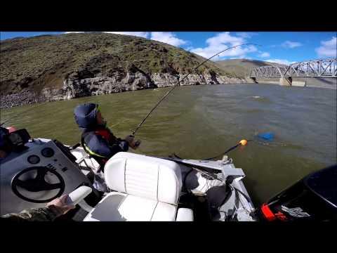 Video Catfishing in oregon