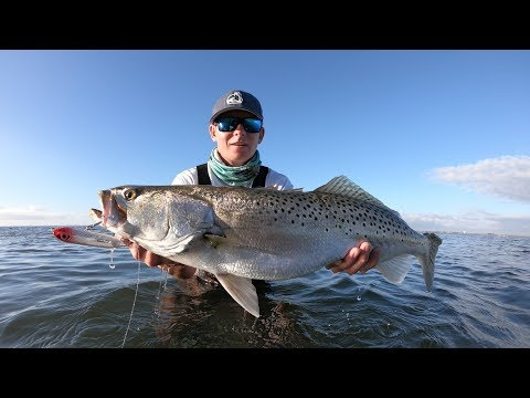 GIANT Speckled Trout- Indian River Lagoon Flats Fishing