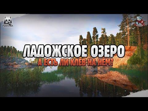 ФАРМ СЕРЕБРА НА