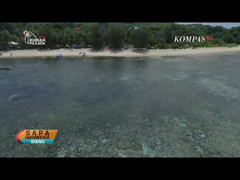 Wakatobi Tak Hanya Menyimpan Kekayaan Bahari dan Biota Laut