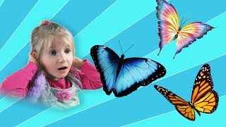 Alinka and many beautiful color butterflies