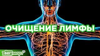 Как почистить Лимфу! Лимфатическая система. Оздоровление и очищение организма. Михаил Советов