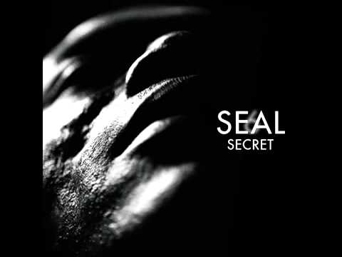 Seal - If I Could Ever Make You Love Me