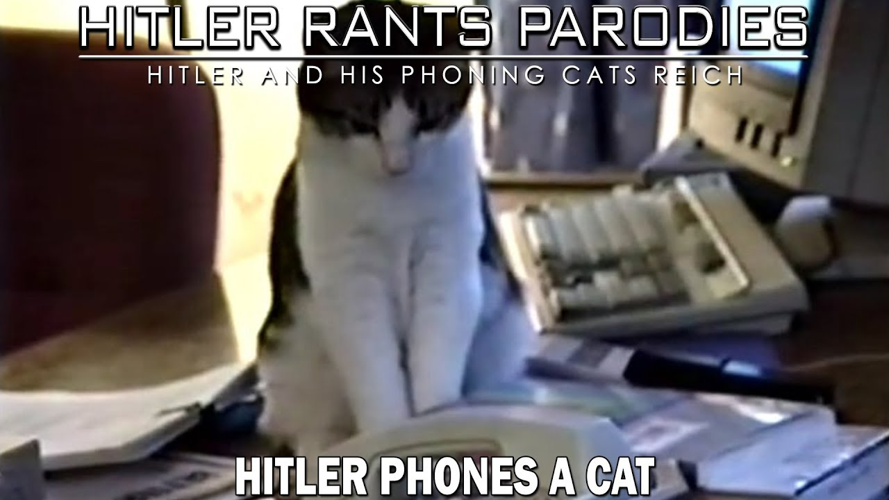Hitler phones a cat