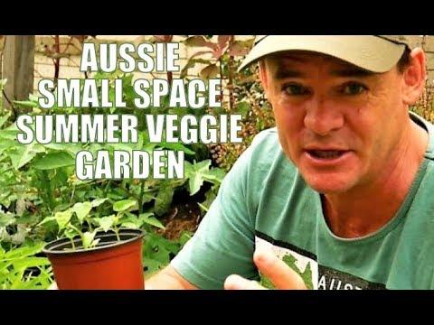 My Australian Small Space Summer Vegetable Garden