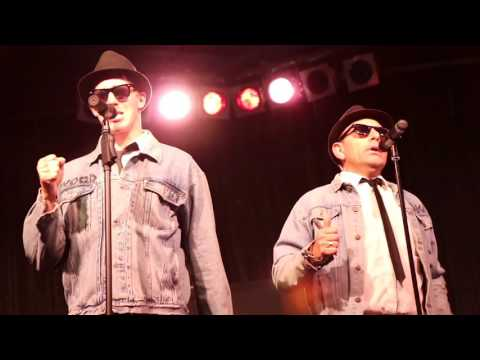 The Birmingham Blues Brothers - Tribute Show Promo 2016