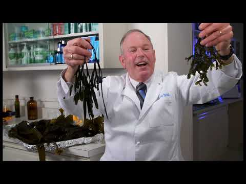 Dr. Charles Yarish