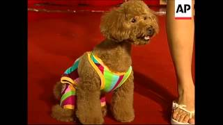 (15 Jul 2009) 1. Models walking with dogs on the catwalk in a dog-w...