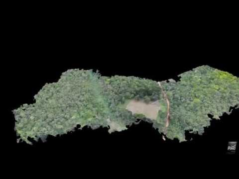 3D Vegetation Drone Mapping  -  23 ha Sundy  -  Príncipe -Sã